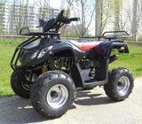 Quad 110 cc -2014