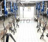 Salle de traite pour vaches et chevres