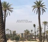 Villa à Palmeraie Marrakech