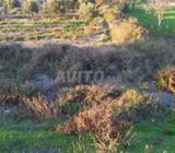 Terrain de 1894 m2 a Souani sur la rocade N16