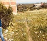 Terrain de 300 m2 Aouama Gharbia