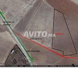1 hectare de terre agricole titrée a vendre