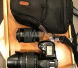 Nikon d70s camera professionel avec deux objectif