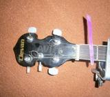 Banjo cinq cordes