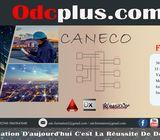 Formation Dialux Caneco Autocad électrique